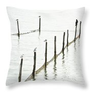 Northern Sea Landscape Throw Pillow