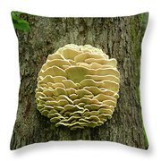 Northern Tooth Fungus Throw Pillow