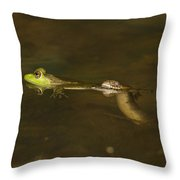 Northern Water Snake Eating Frog Throw Pillow