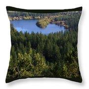 Northwest Splendor Throw Pillow