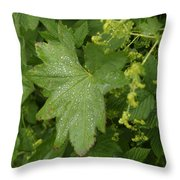 Norway, Hidra, Water Droplets Throw Pillow