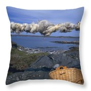 Norway Sheep Wool Getting Rolled Throw Pillow