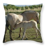 Norwegian Fjord Horse And Colt Throw Pillow