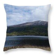 Norwegian Lake Throw Pillow