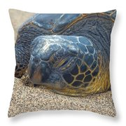 Nose In The Sand Throw Pillow