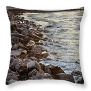 Nostalgic Foam Throw Pillow