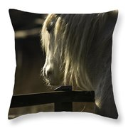 Nostalgy Throw Pillow