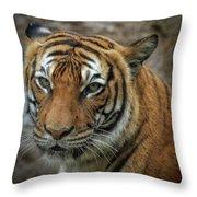 Not A Happy Sita Throw Pillow