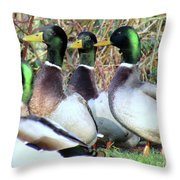 Who Is Taller? Throw Pillow