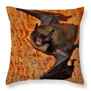 Not A Pretty Picture Throw Pillow