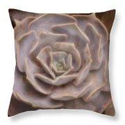 Not A Rose Throw Pillow