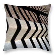 Not A Zebra Throw Pillow