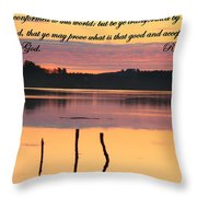 Not Conformed Throw Pillow