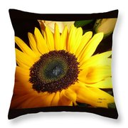 Peaceful Vision Throw Pillow