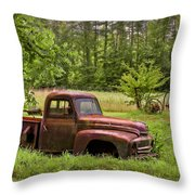 Not Forgotten Throw Pillow by Debra and Dave Vanderlaan