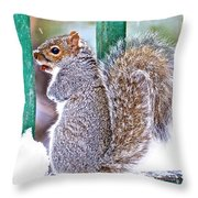 Not Leaving Without A Peanut Throw Pillow