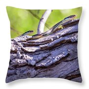 Not One But Three --- Snakes Throw Pillow