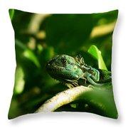 Not Quite Hidden Iguana Throw Pillow