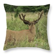Not Talking To You  Throw Pillow
