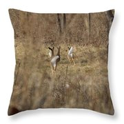 Nothing But White Tails Throw Pillow