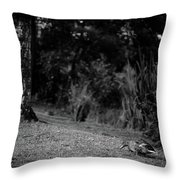 Nothing Important Happened Today Throw Pillow