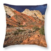 Notom Morning Throw Pillow