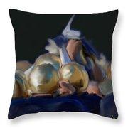 Notre Dame #1 Throw Pillow