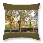Notre Dame From The Window Throw Pillow