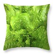 Nourish In Green Throw Pillow