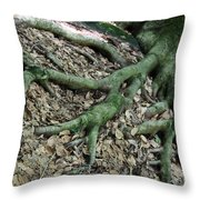 Nourishment Throw Pillow