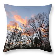 November At Twilight Throw Pillow