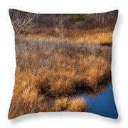 November Brook And Wetland Barren  Throw Pillow