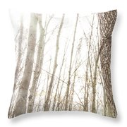 November Comes Throw Pillow