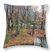 November Rainy Day In Waltham  Throw Pillow
