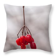 November Reds Throw Pillow