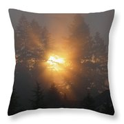 November Sunrise - 1 Throw Pillow