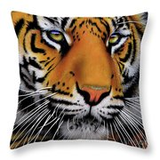 November Tiger Throw Pillow by Jurek Zamoyski