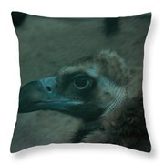 Now What Throw Pillow