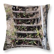 Nowhere Stairs Throw Pillow