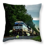 Ns 62w With Blurred Flowers Throw Pillow