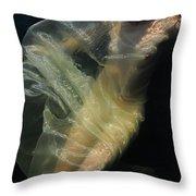 Celestial Body Throw Pillow