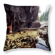 Nude Standing In A Leaf Pool  Throw Pillow