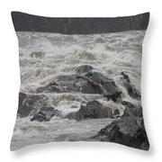 Potomac Torrent Throw Pillow