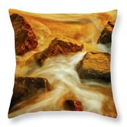 Nuggets Of Gold Throw Pillow by Rick Furmanek