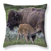 Nurtured Throw Pillow