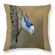 Nuthatch In Profile Throw Pillow