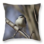 Nuthatch On Perch Throw Pillow