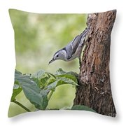 Nuthatch On The Move Throw Pillow