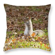 Nuts For Fall Throw Pillow