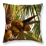 Nuts On Tree  Throw Pillow